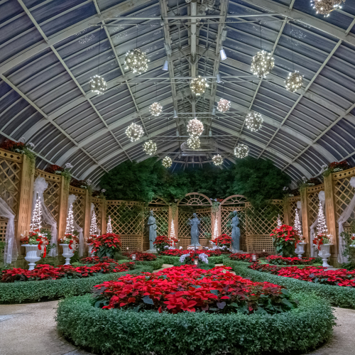 This Week at Phipps: Dec. 28 – Jan. 3