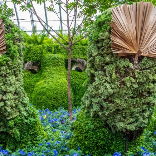 This Week at Phipps: Aug. 13 – 19