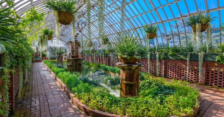 This Week at Phipps: Sept. 3 – 9