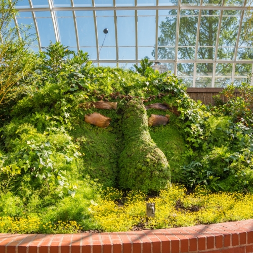 This Week at Phipps: Sept. 24 – 30