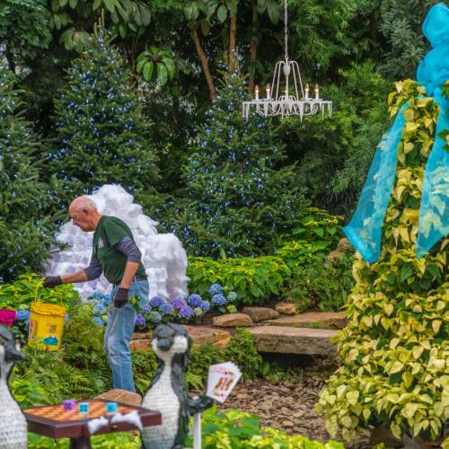 This Week at Phipps: Nov. 12 – 18
