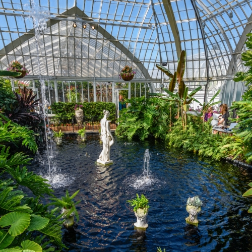 This Week at Phipps: May 7 – 13