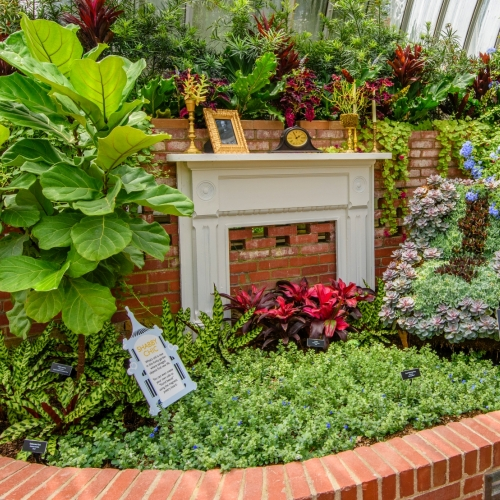 This Week at Phipps: Sept. 26 – Oct. 2