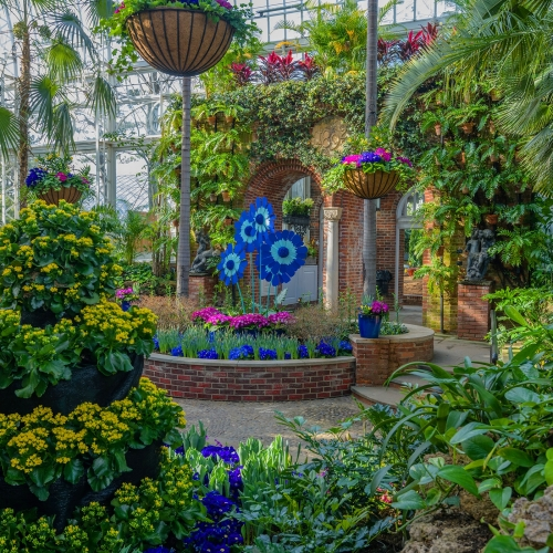This Week at Phipps: March 25 – 31