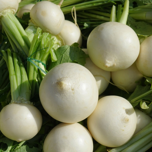 What We're Cooking With Now: Turnips