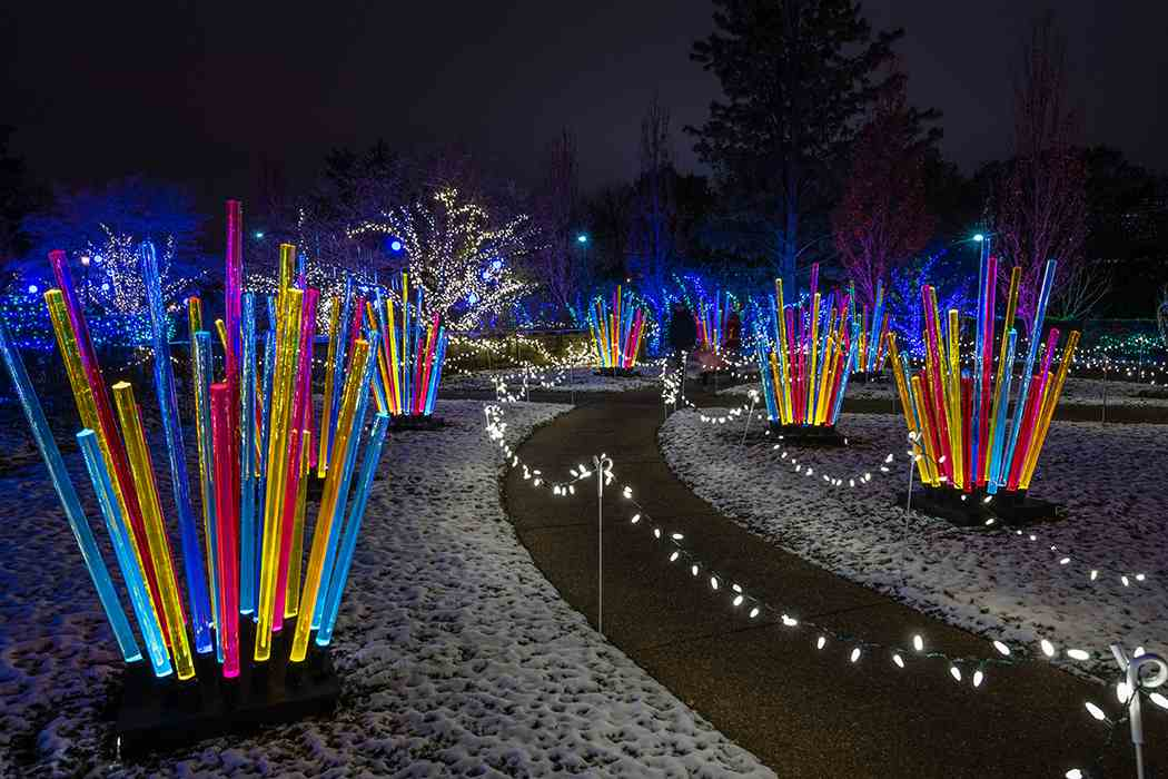 Winter Flower Show and Light Garden 2018: Holiday Magic: Let It Glow!