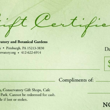 Gift Certificate for Admission