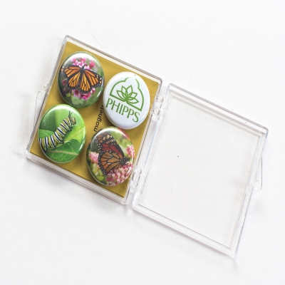 Phipps Butterfly Magnets