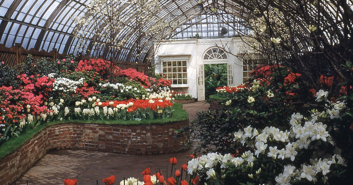 Spring Flower Show 1942 | Phipps Conservatory and ...