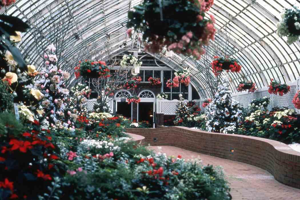 Winter Flower Show 1983: A Victorian Christmas