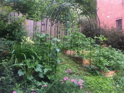 Phipps Sustainable Garden Awards
