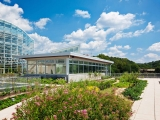 Center for Sustainable Landscapes Green Roof