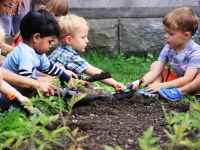 Little Sprouts: Fall Programs