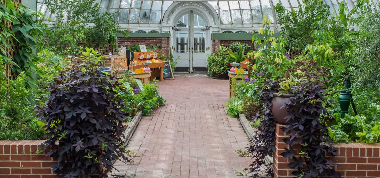 Gallery Room | Phipps Conservatory And Botanical Gardens | Pittsburgh PA