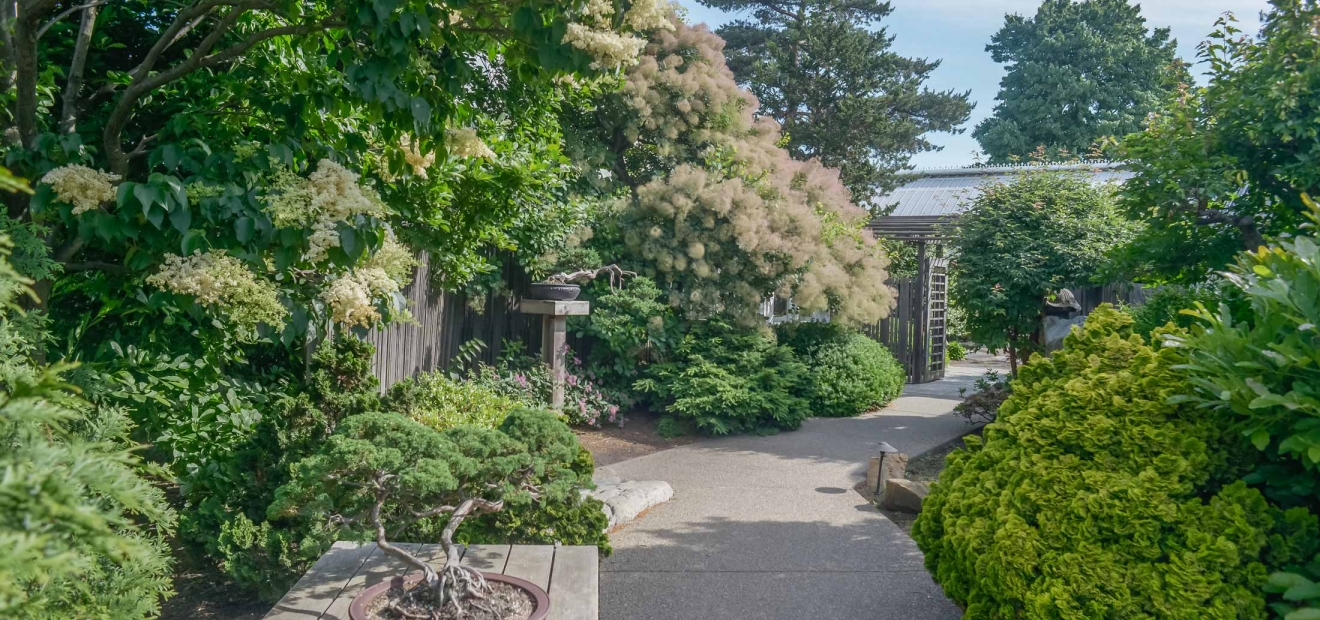 Japanese Courtyard Garden Phipps Conservatory and