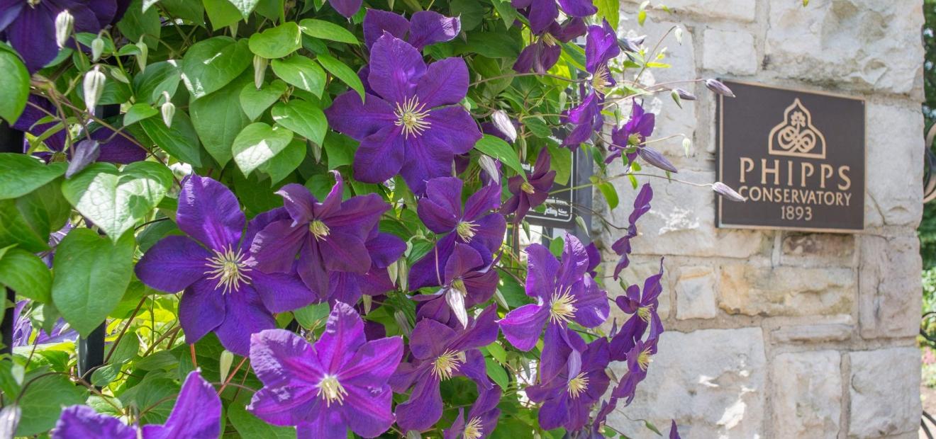 Garden Design Garden Design with Outdoor Garden Customize Your