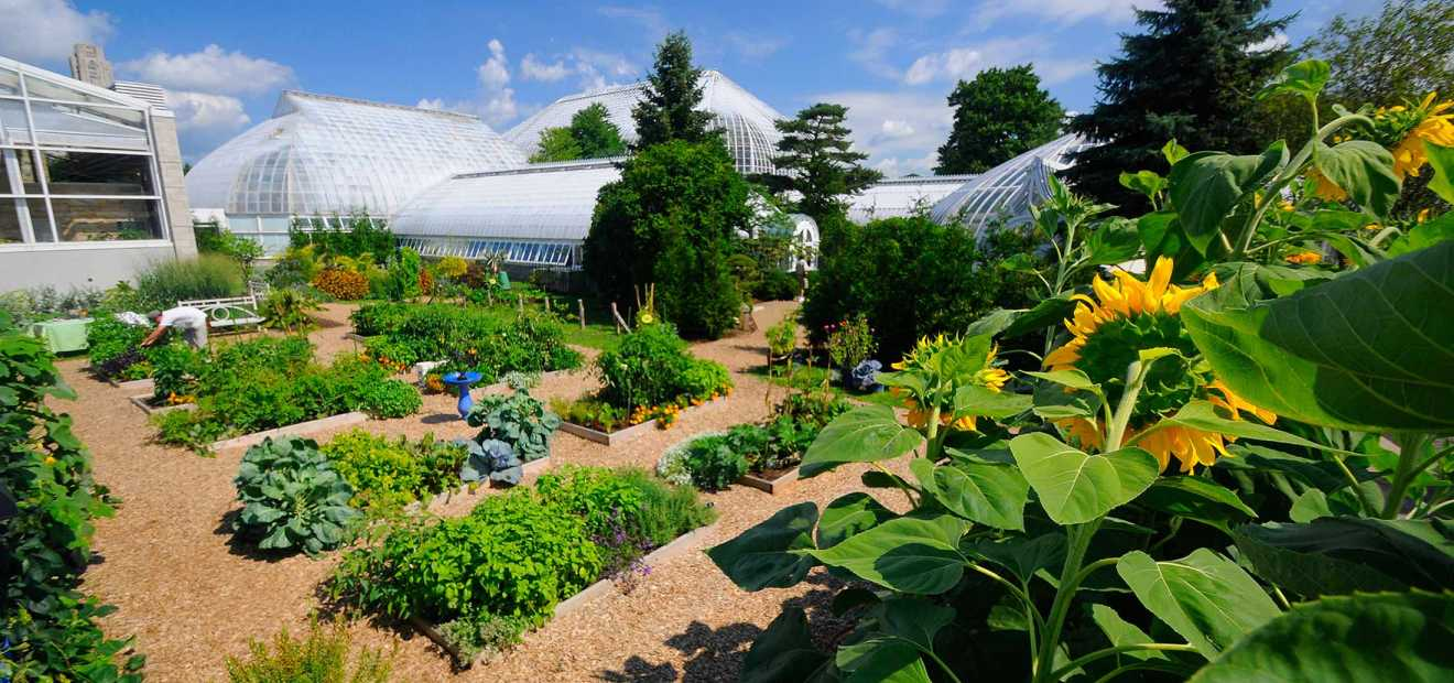 rooftop edible garden | phipps conservatory and botanical gardens