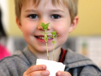 Little Sprouts: Winter and Spring Programs