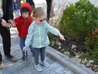 Kids Night Out: Winter and Spring Programs