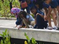 Field Trips and School Outreach
